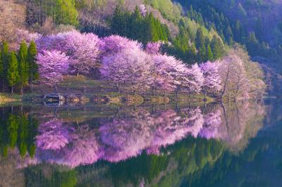 中綱湖(長野県)