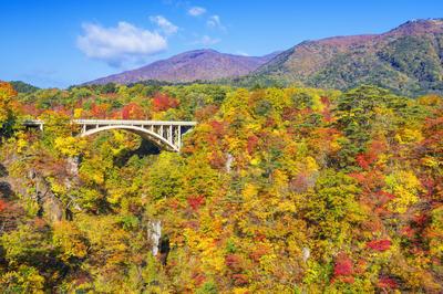 日本の橋の絶景