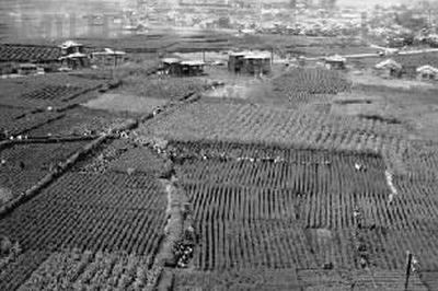 狭山事件(1963年5月)