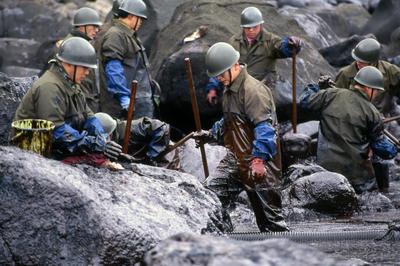 ナホトカ号重油流出事故(1997年1月)