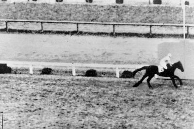 セントライトが日本競馬史上初の三冠馬に(1941年)