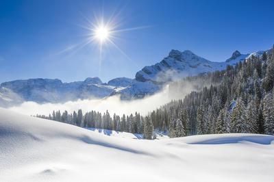 冬の動画素材