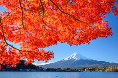 日本の秋の風景