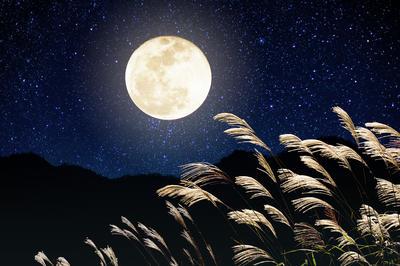 お月見・中秋の名月