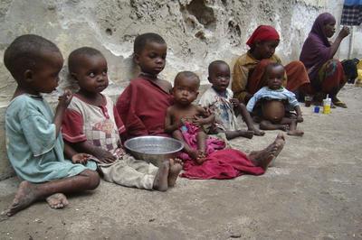 飢餓 / 栄養失調