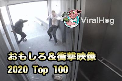 2020年アフロが選んだViralhog映像TOP100