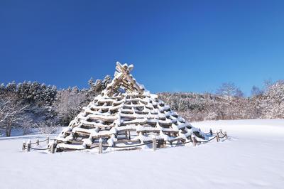 【動画素材】北海道・北東北の縄文遺跡群
