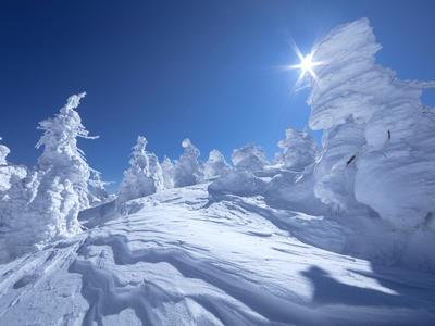 日本の冬の絶景