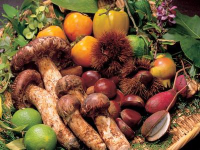 季節の食イメージ「秋の味覚」