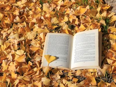 季節の制作物に…「〇〇の秋」