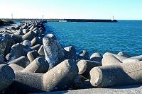 千葉県 テトラポッドのある海岸