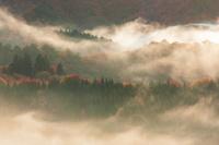 秋田県 光射す雲海の太平湖