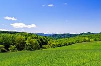 北海道 緑の草原と山並み
