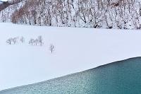 秋田県 秋扇湖、冬の景観