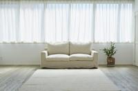 窓とソファーと観葉植物
