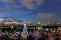 東京都 イルミネーションのお台場と流れる雲 夕景