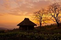 鳥取県 江府町 藁ぶきの家と夕陽