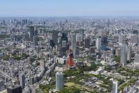 東京都 港区 芝公園周辺
