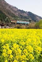 高知県 予土線 中半家鉄道橋