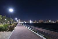 夜の豊洲ぐるり公園