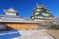 愛知県 雪の名古屋城