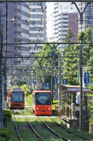 東京都 都電 荒川線(学習院下付近)