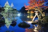 石川県 兼六園ライトアップ