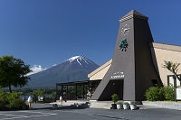 山梨県 河口湖大石公園自然生活館前からの富士山