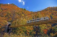 山形県 紅葉と電車