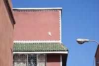 モロッコ マラケシュ 家の壁 「ファティーマの手」と呼ばれる...