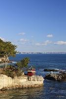 茨城県 五浦海岸