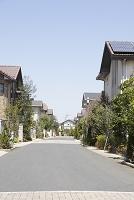 春の住宅街