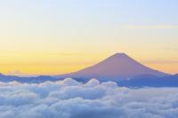 山梨県 櫛形山林道から望む朝焼けに染まる富士山と雲海