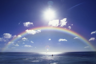 ハワイ 虹と海