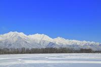 長野県 雪原の田園と北アルプス後立山連峰(左より爺ヶ岳・鹿島...