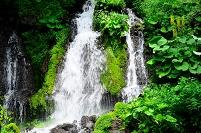 山梨県 吐竜の滝
