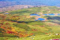 北海道 紅葉の沼の平