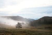 朝霧の美ヶ原