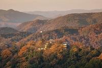 岡山県 朝焼けの紅葉と備中松山城