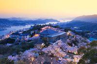 広島県 千光寺公園 夜桜