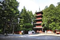 栃木県 日光東照宮の五重塔
