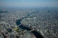東京都 隅田川(両国JCTより上流 東京スカイツリー方面)