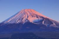 静岡県 越前岳より望む朝日に染まる富士山と宝永火口