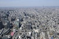 京橋二丁目西地区再開発より日本橋・スカイツリー方面