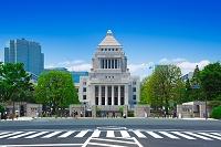 東京都 国会議事堂と新緑の並木道