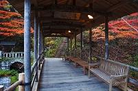 長野県 上田市 五台橋