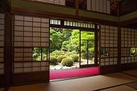 和室と日本庭園