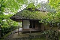 京都市 新緑の金福寺 芭蕉庵