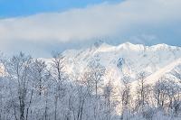 長野県 白馬村 霧氷と雪山