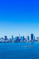 東京都 東京湾と街並